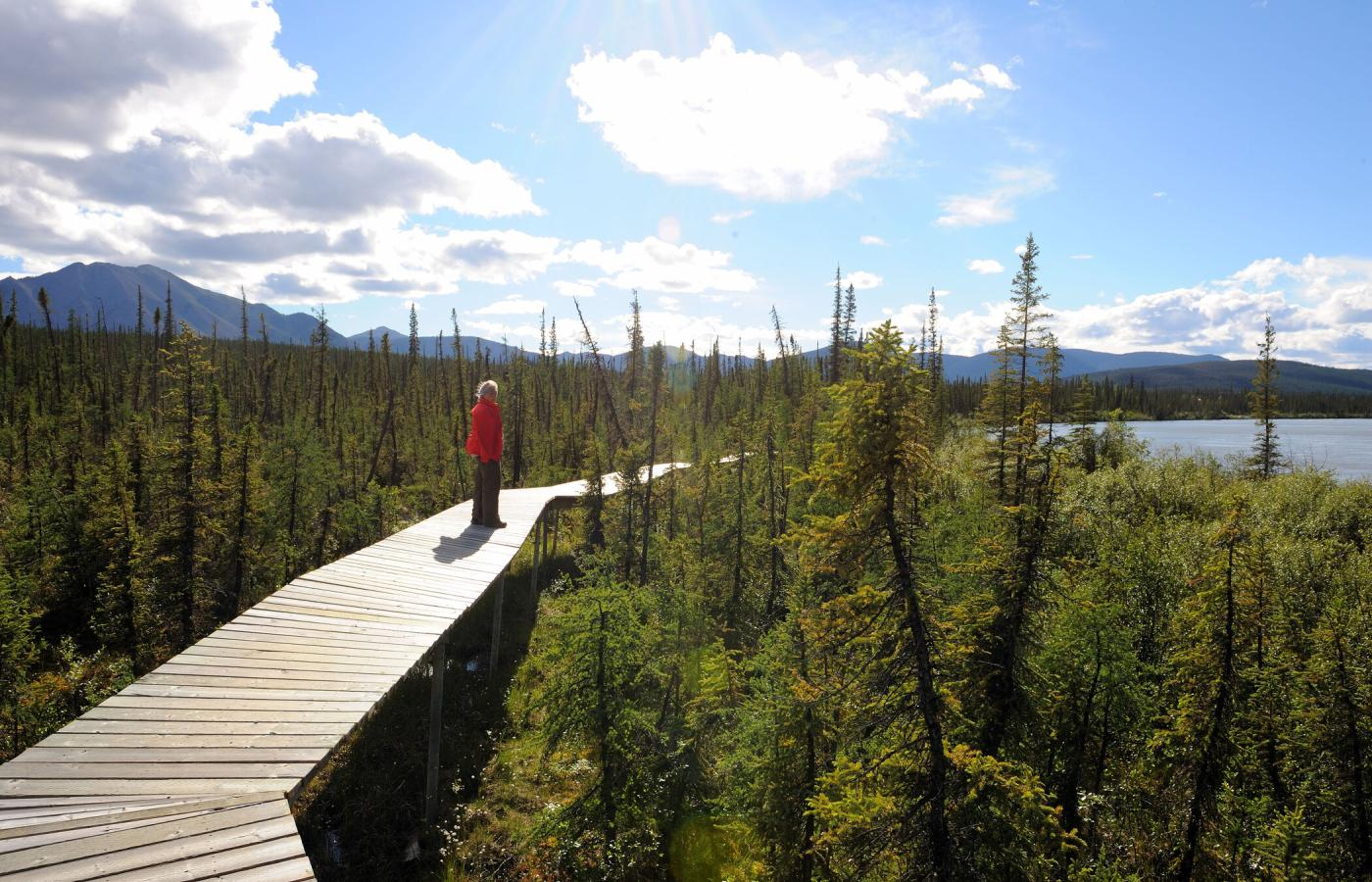Virginia Falls has a network of trails in the Nahanni National Park Reserve in Canada's Northwest Territories.