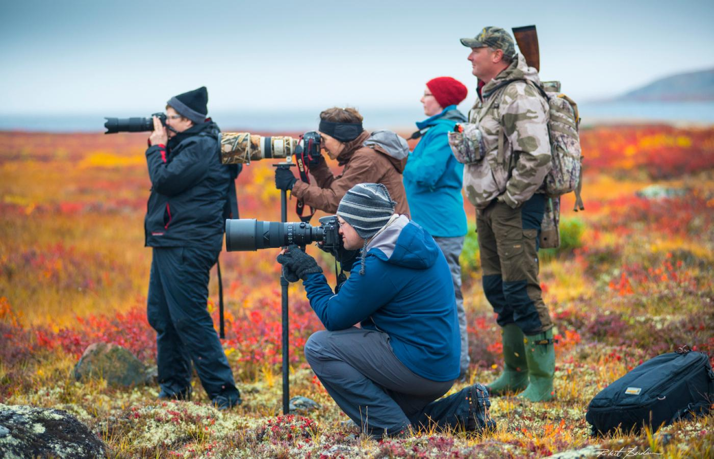 Take photos on the Barrenlands in the Northwest Territories
