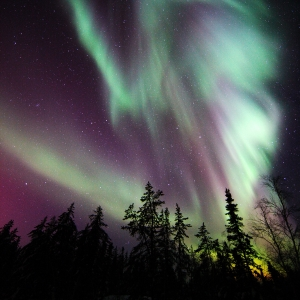 Welcome to Nature's Greatest Light Show | Spectacular ...